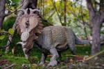 Pachirhinosaurus