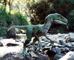 Dromeosaur patrolling the river bank