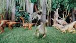 Tyrannosaurus attack on Gallimimus by Krulos