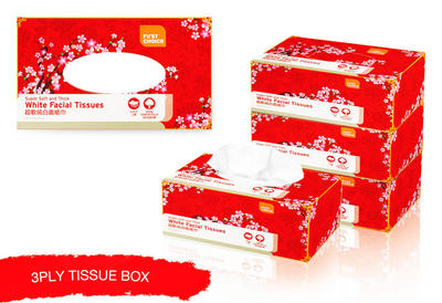 CNY Tissue Box by aintnoevil
