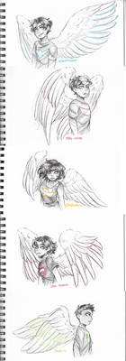 Wing Sketches