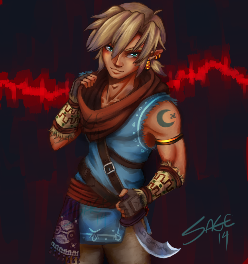 07082014 Gerudo Link by SageSins on DeviantArt
