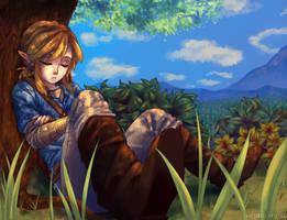 WiiU Zelda by SageSins