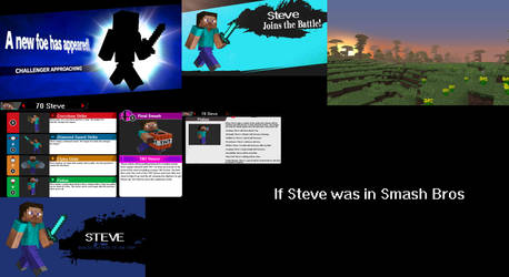 If Steve was in Smash Bros