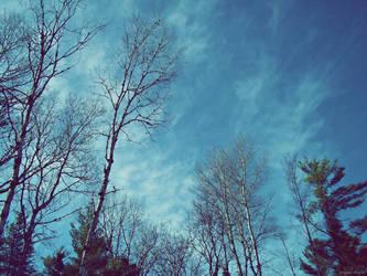 Wild Blue Yonder by BlondeKatastrophe