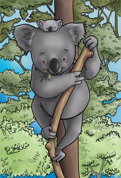 Koaladrawing