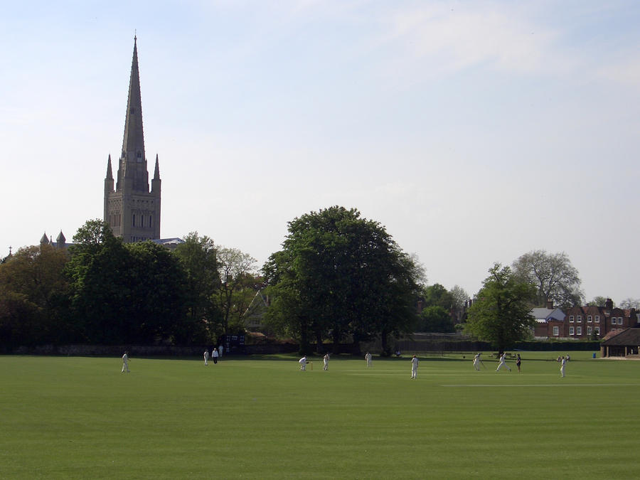 Cricket by Norwich Cathedral