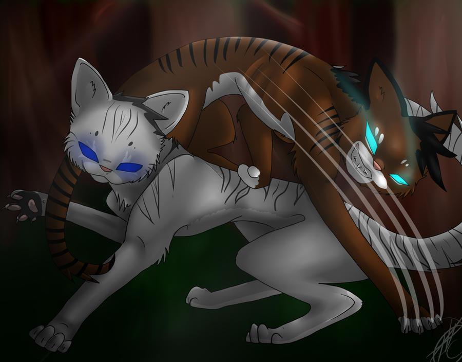 Ivypool and Hawkfrost by yitchakandray