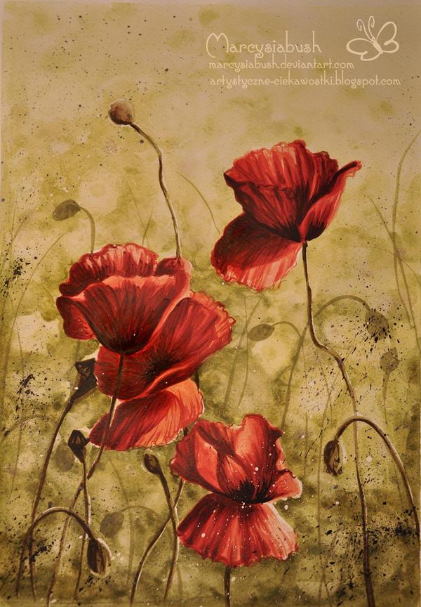 Poppys by Marcysiabush