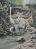 Unicorns by Marcysiabush