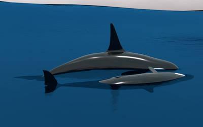 Orca Scene