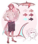 sharky boy adopt 2 auction - CLOSED by izudrawss