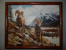 Living High - Bighorn Sheep
