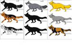 Warrior cats up for adoption