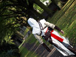 Assassins Creed - In the Shade