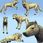 Feral Heart Realistic Horse Texture