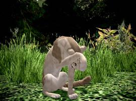 Feline Animation Edits! by AquaChocobo