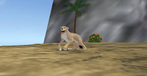 Lion Animations by AquaChocobo