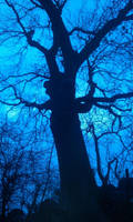 Friendly Tree