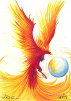 Phoenix by Asthenot