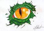 Draconic Eye