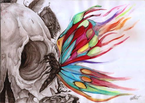 Papillons du purgatoire