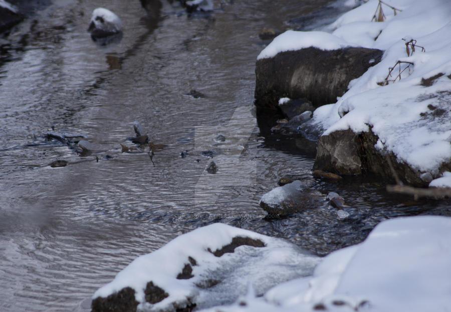 Snowy Creek by TheBirdsFeathers