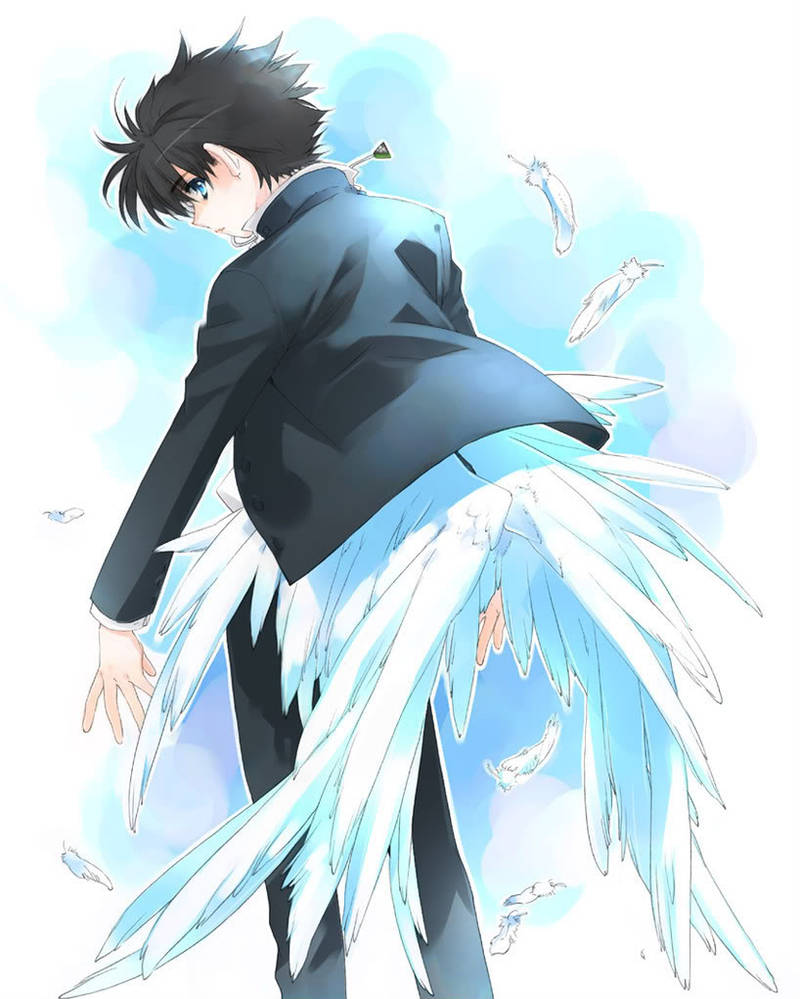 Anime with angelic wings by animepewds