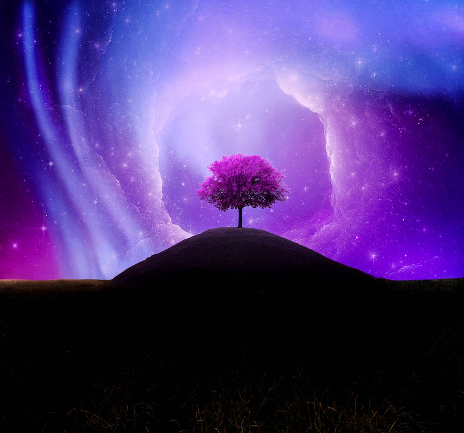 The Tree Of Life by uptownhustler