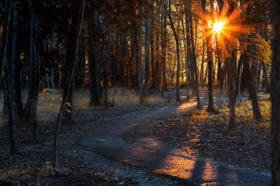Autumn Morning by JonUriah