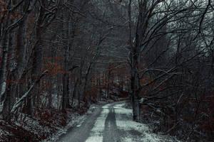 Snowy Mountain Road by JonUriah