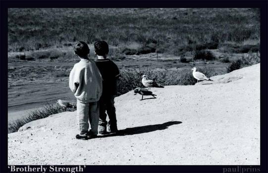 Brotherly Strength