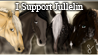 I support... by Jullelin