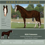 Hewa's Finest RDS Fernando