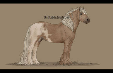 Gypsy Vanner Commission #2 by Jullelin