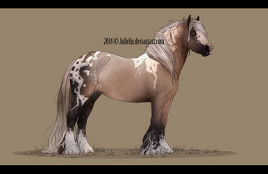 Gypsy Vanner Auction #4 ENDED by Jullelin