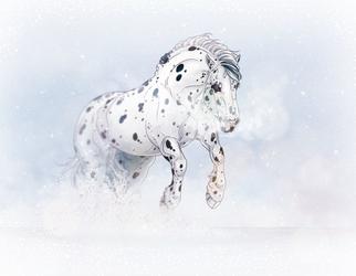 Spots In Snow by Jullelin