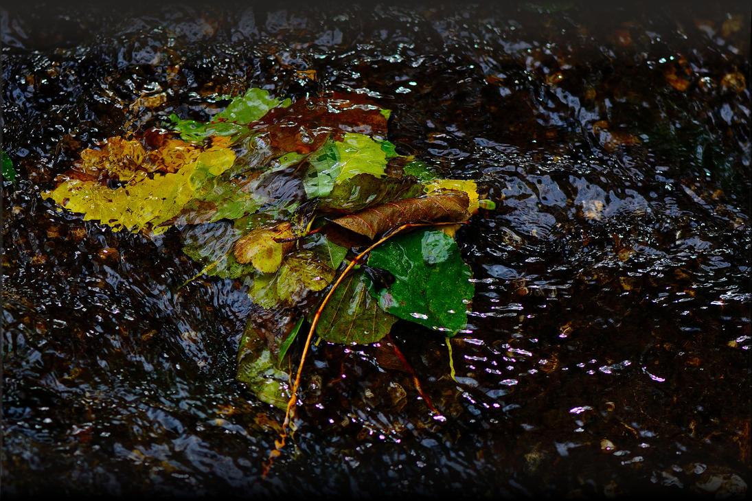 Autumn by Wetterlage