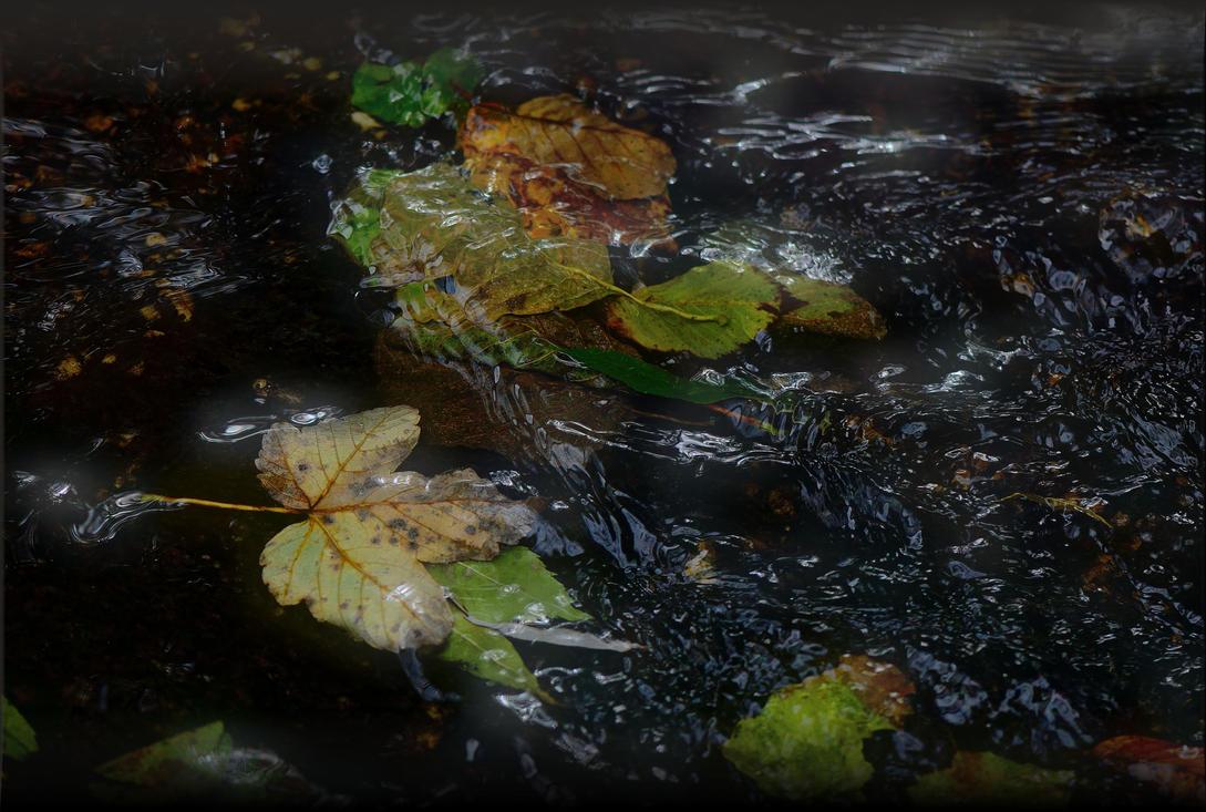 Autumn II by Wetterlage