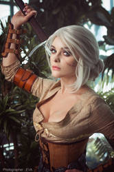 Cirilla (The Witcher 3) #13