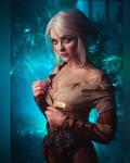 Cirilla (The Witcher 3) #15