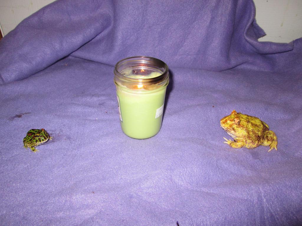 Cueyatl and Grimm memorial candle by Bane-Skyewillow