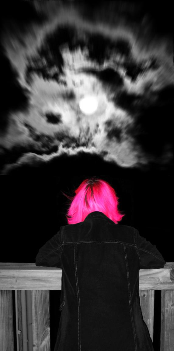 lollirotfest's Profile Picture