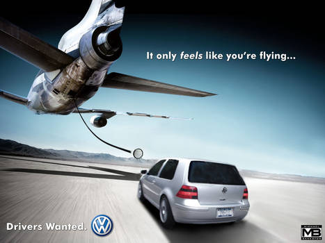 VW: Pilot's Wanted