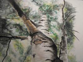 watercolour tree 1