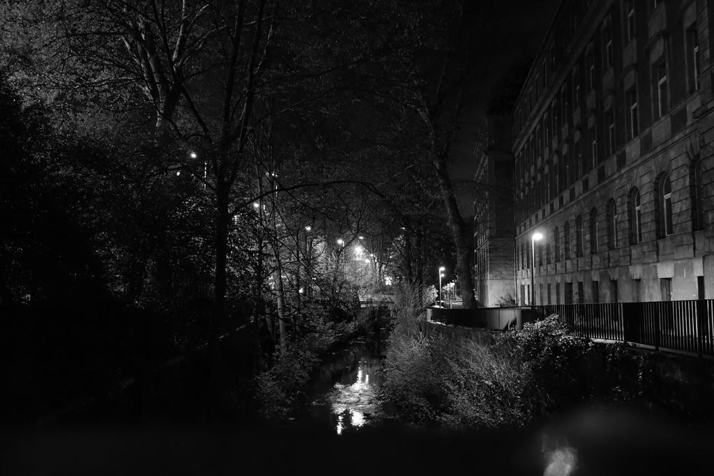 Night by schafsheep