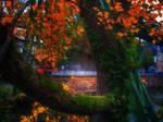 Herbst Ausschnitt
