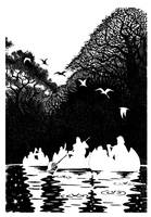 wild river by eaneli