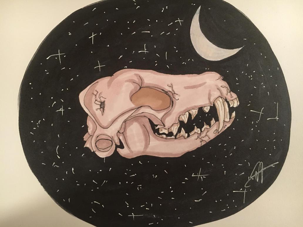 Flying fox skull by Ne0nUmbre0n