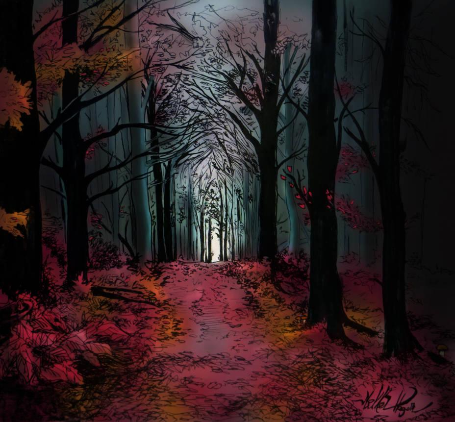 Redwood by Mikkellll